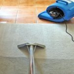 Best_Carpet_Cleaning_Sydney