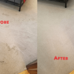 Carpet-Steam-Cleaning-Before-After-Steam-Cleaning-2