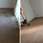 Same-Day-Carpet-Cleaning-Sydney-5